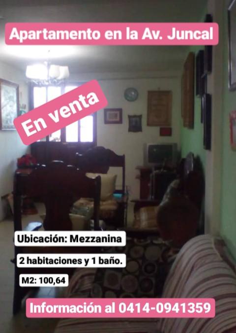 Vendo apartamento en la avenida juncal